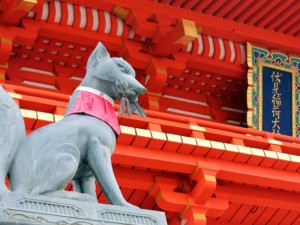 Fushimi-inari Shrine & Sake Tasting Tour