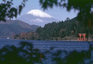 Mt.Fuji - Hakone (Owakudani)1 Day Tour
