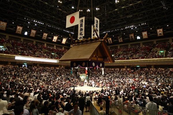 Tokyo Sumo Tournament Tour