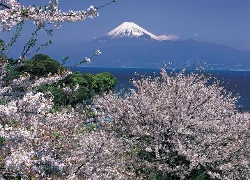 High Speed Train Nagano To Fuji Travel Time